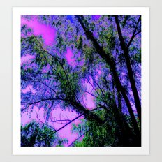 As The Wounded Willows Weep Art Print