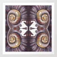 Chilean Land Snail (Symmetry Edit) Art Print