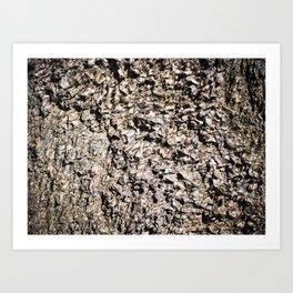 Martian Surface Art Print