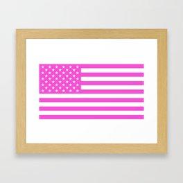 U.S. Flag: Pink Framed Art Print