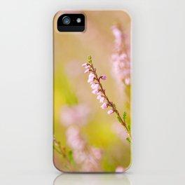 Soft focus of pink heather macro iPhone Case
