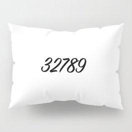 32789 winter park, fl Pillow Sham