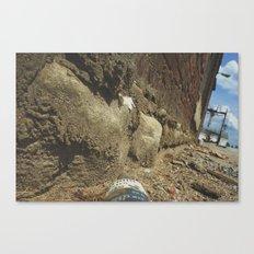 Ants View  Canvas Print
