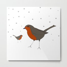 Robin & Little Bobbin. Metal Print
