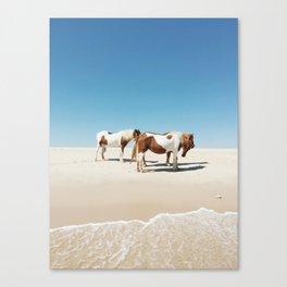 Summer Shore Horses Canvas Print