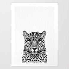 Leopard, Safari Animal, African Animal Art Print