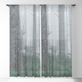 Foggy Forest Adventure Sheer Curtain
