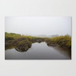Foggy Morning in the Salt Marsh Canvas Print