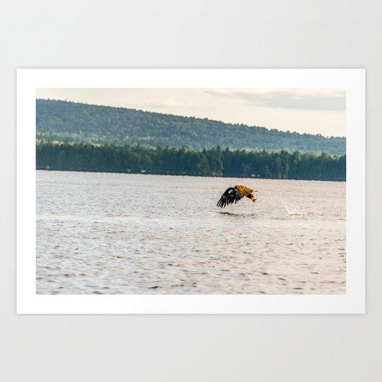 Master Fisher Art Print