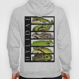 Tree frogs of North America - Hylidae Hoody