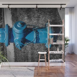 Firefightn' Blues Selective Color Fire Hydrant Fire Plug Wall Mural