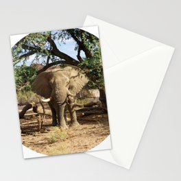 Voortrekker the Elephant Stationery Cards