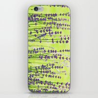 lavender iPhone & iPod Skins featuring Lavender by Tanja Riedel