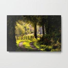 'Long Road Back Home' Landscape by Jeanpaul Ferro Metal Print