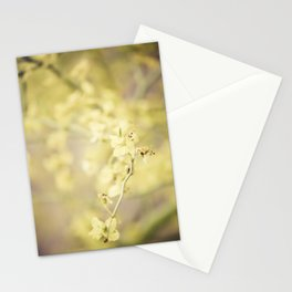 Bask in the Warmth Stationery Cards