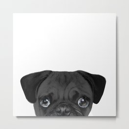 Black Pug, Original painting by miart Metal Print