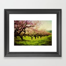 Orchard Lane Framed Art Print