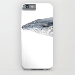 Humpback whale portrait iPhone Case