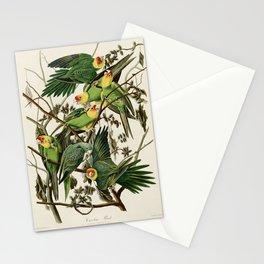 Carolina Parrot - John James Audubon's Birds of America Print Stationery Cards