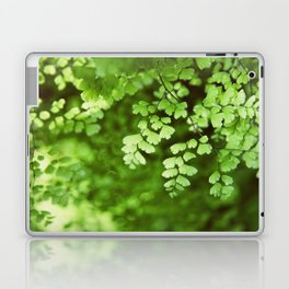 maidenhair Laptop & iPad Skin