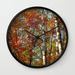 Birch Fall Colors Wall Clock