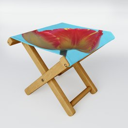 Profile of A Red and Yellow Tulip Folding Stool