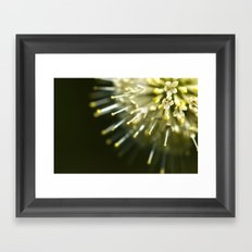 macro! Framed Art Print