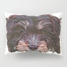 Dog Aussie Pom Crossbreed fair ranking entwined consumed Pillow Sham