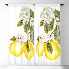 Lemon tree with flowers and fruits in vintage style Blackout Curtain