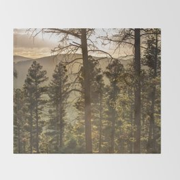 Mountain Forest New Mexico - Nature Photography Throw Blanket