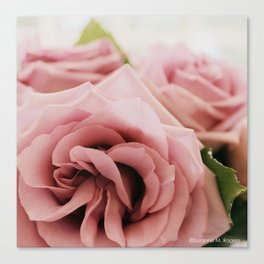 Sterling Roses, No. 2 Canvas Print