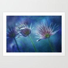 spring pasque flower Art Print