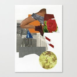 tennis rose Canvas Print