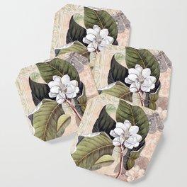 Vintage White Magnolia Coaster