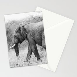 Elephant Tracks Stationery Cards