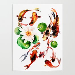 Koi Fish in Pond, Feng Shui Poster