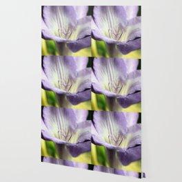 Freesia flowers Wallpaper