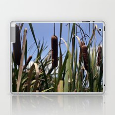 Cattail Laptop & iPad Skin