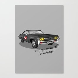 Ghosthunters Canvas Print