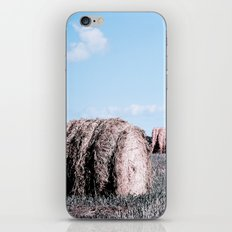 Bale Out iPhone & iPod Skin