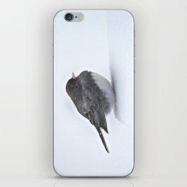 Brave Bird in a Blizzard iPhone Skin