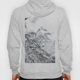 black and white fooliage Hoody