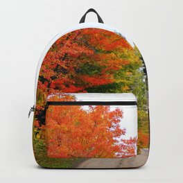 Mountain Road in Autumn Colors Backpack