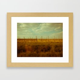 The Spring of Springs. Framed Art Print