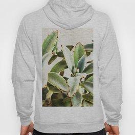 cactus leaves Hoody