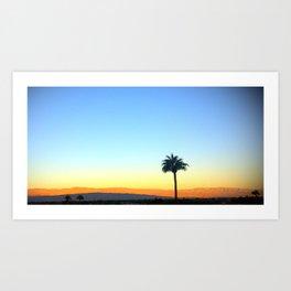 Panorama Palm Art Print