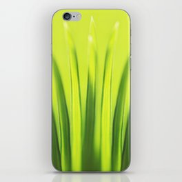 Palm Tree Sunlight Leaf Tropical Summer Green Yellow Hawaii Pattern iPhone Skin