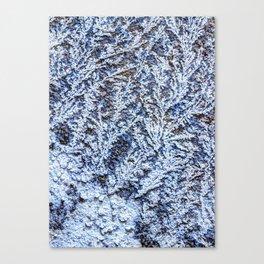 road salt Canvas Print