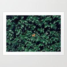 Orange horse in the bush Art Print