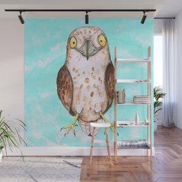 Cute hawk Wall Mural